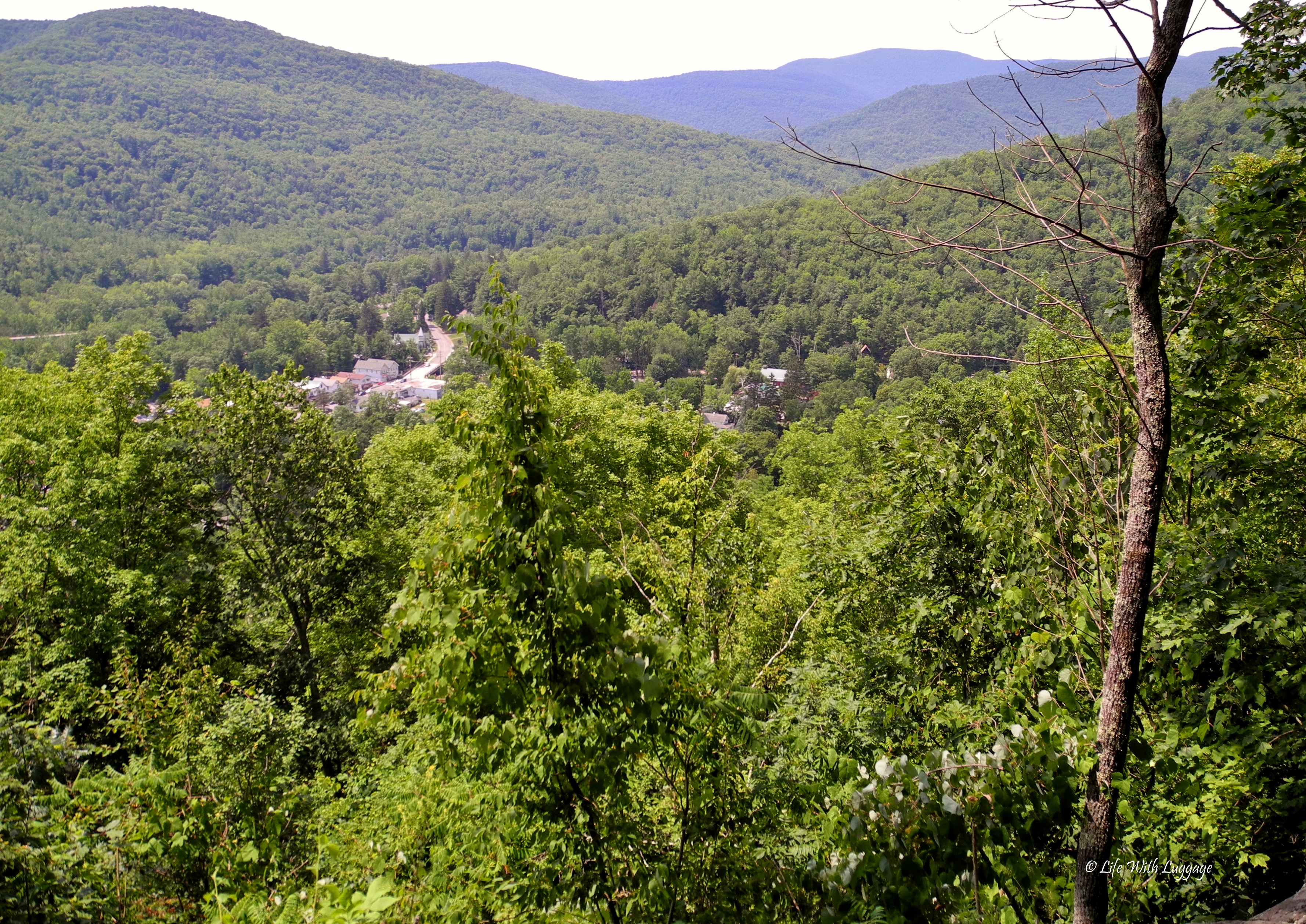 The view from Mt. Tremper